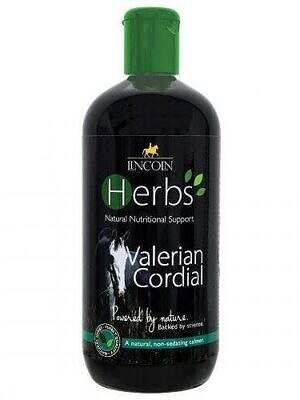 Lincoln-Herbs-Valerian-Cordial-500ml