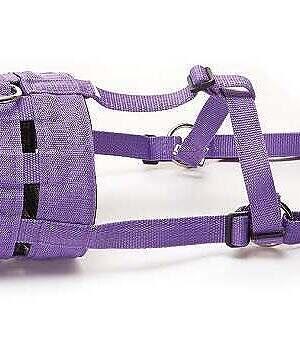 Hy-grazing-Muzzle-purple