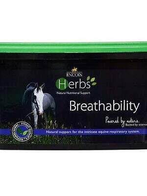 Lincoln-Herbs-Breathability