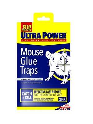 Big Cheese Ultra Power Mouse Glue Trap