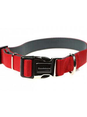 doodlebone padded collar red