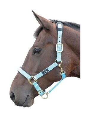 Hy-Deluxe-Padded-Head-Collar-bright blue