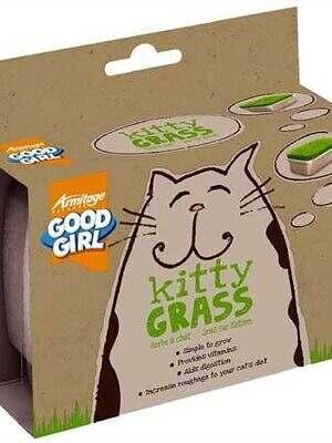 Kitty_Grass