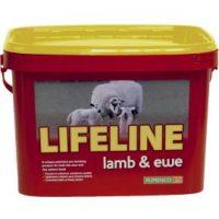 lifeline_lamb_ewe_bucket