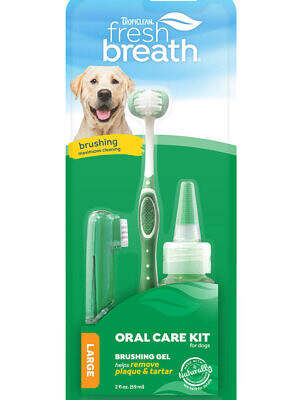 Oral-Care-Kit_Large-Dogs