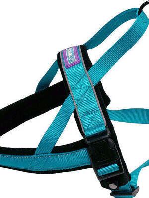 reflective-padded-harness aqua