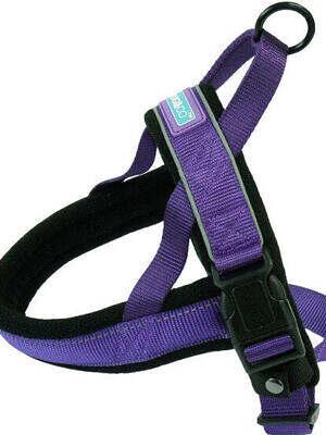 reflective-padded-harness_purple