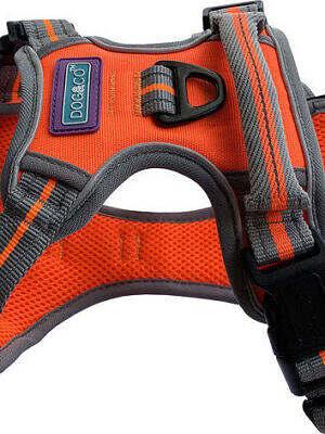 sports-harness-reflective_orange