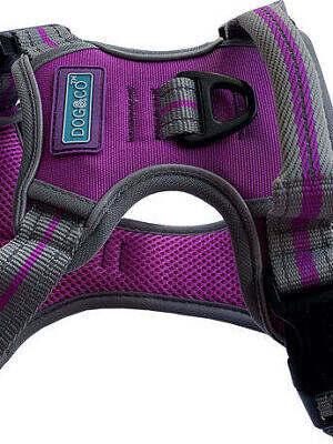 sports-harness-reflective_purple